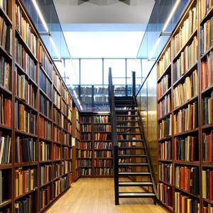 Библиотеки Лобны